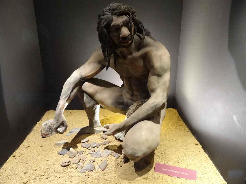 Museo Arqueológico Regional - Exposición Permanente (12)