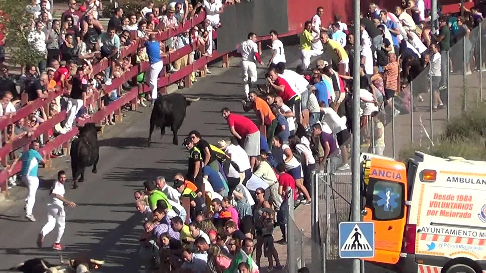 Comienzan los encierros de las Fiestas de Alcalá 2014