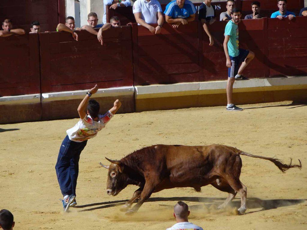 Primer encierro Fiestas de Alcalá 2014 (171)