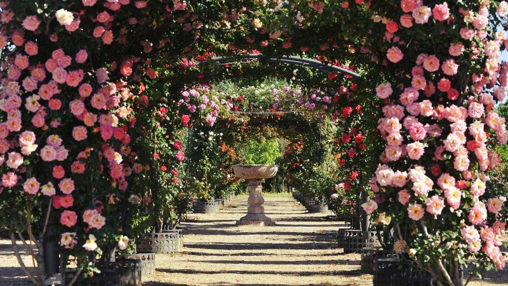 La Rosaleda Jardín Botánico