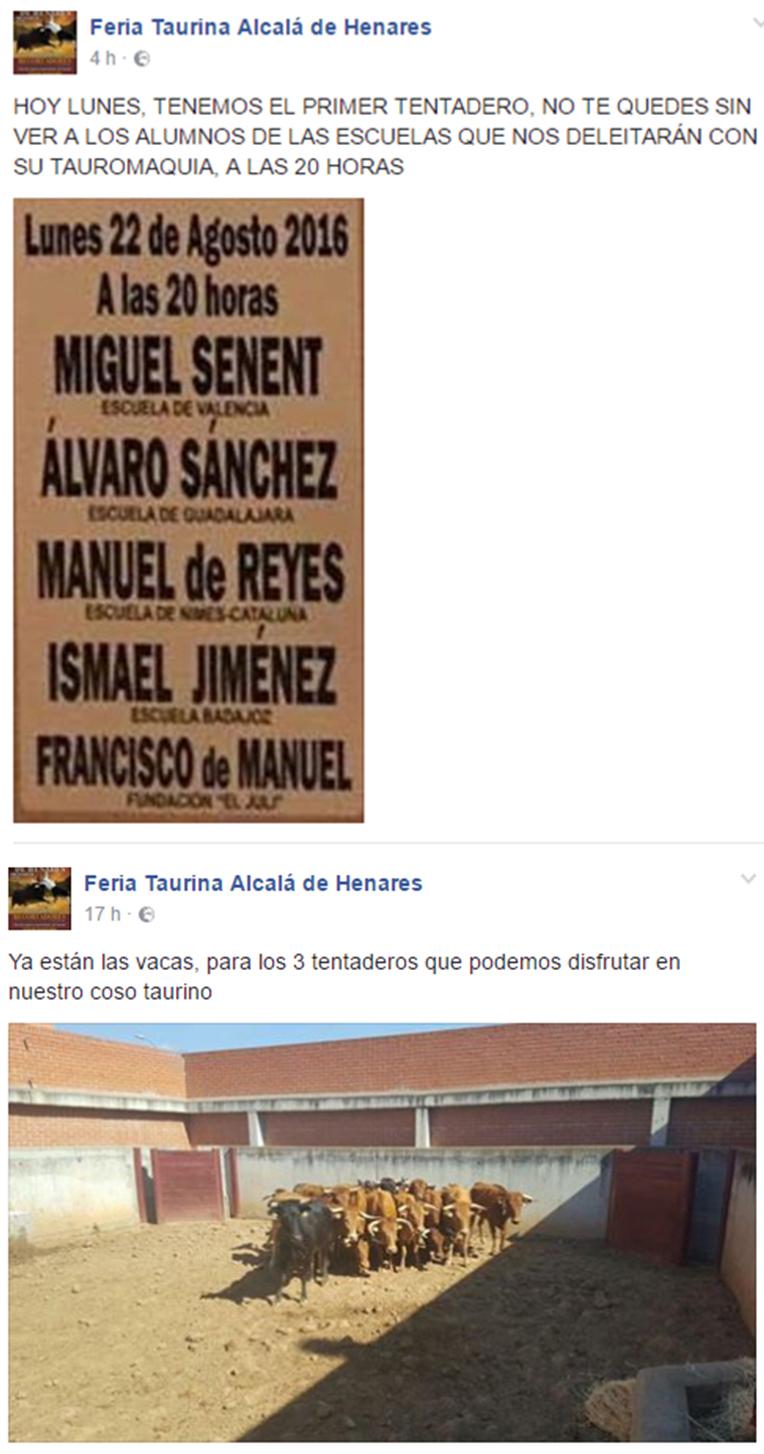 taurina_murro_facebook