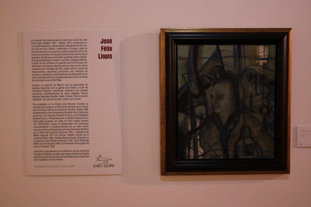 museo-de-arte-iberoamericano-68