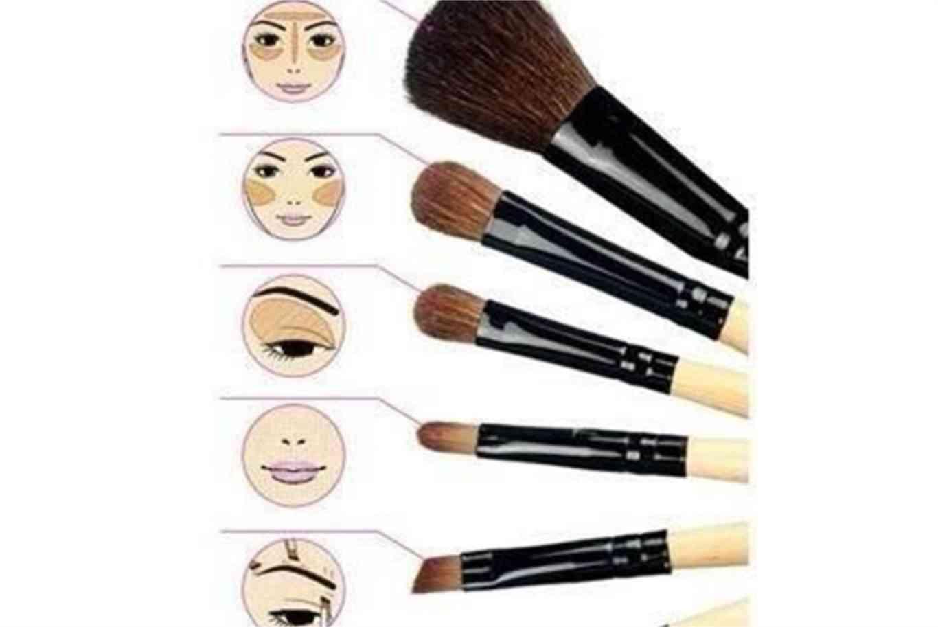 087e803c6 Para qué se usa cada brocha de maquillaje - Dream Alcalá