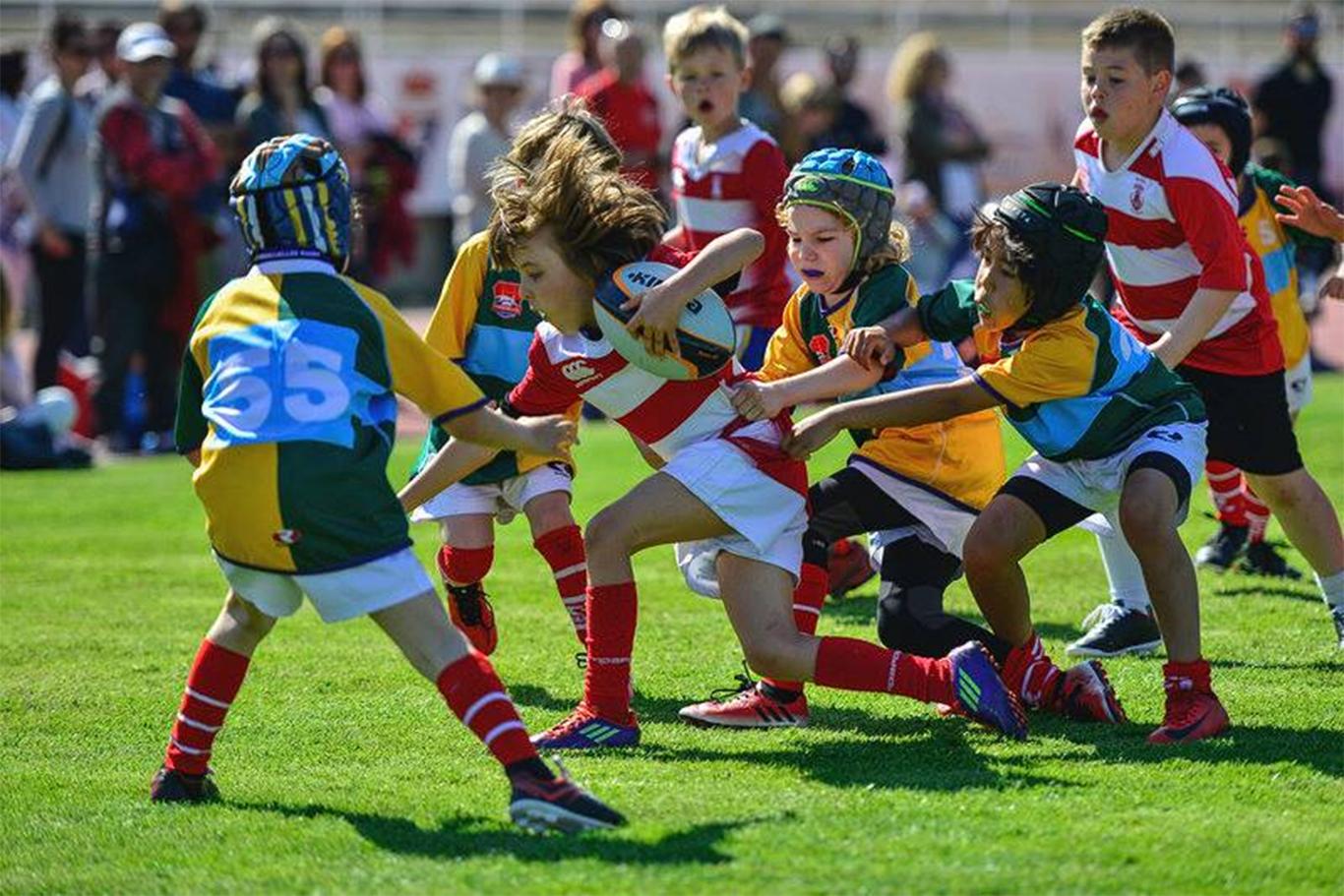 Madrid Comunidad Olímpica abre los colegios a los deportes ...