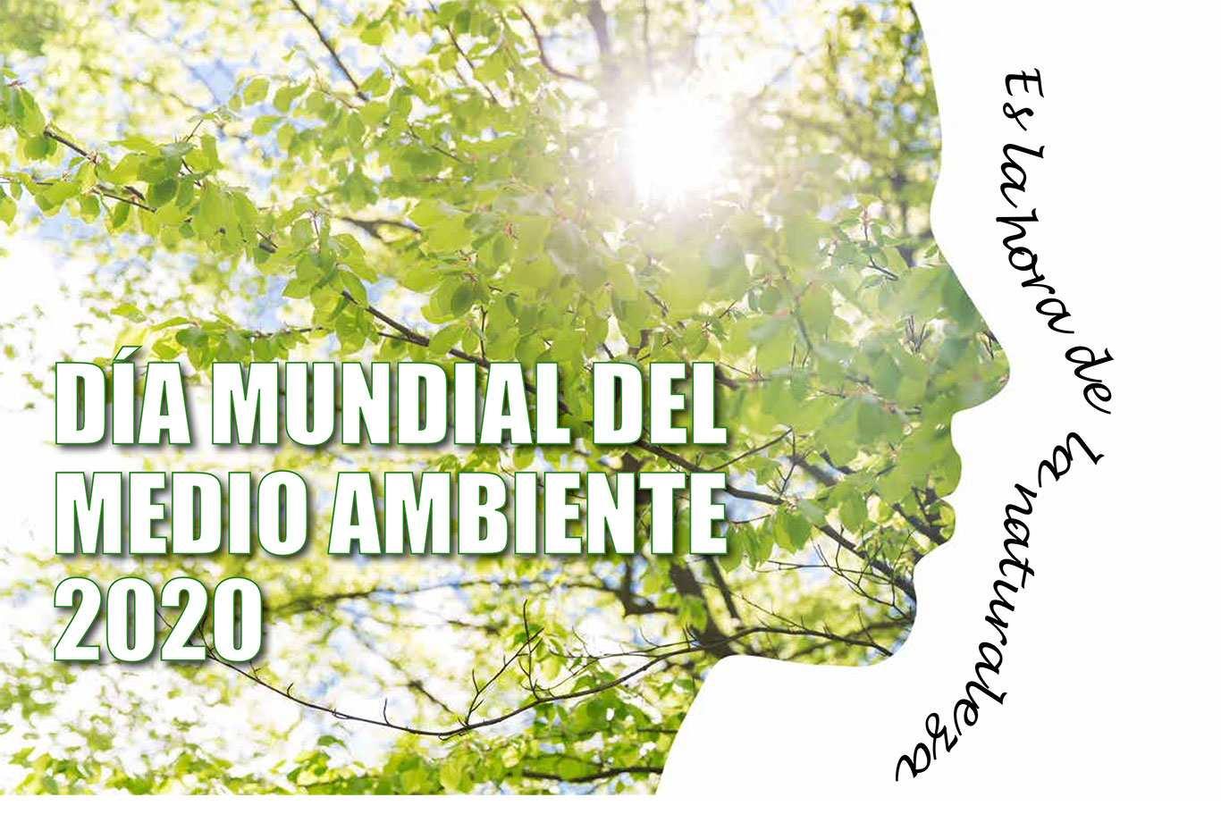 Día Mundial del Medio Ambiente, desde casa, en Alcalá de Henares ...